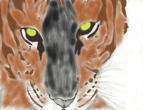 tigerdrawing1.jpg